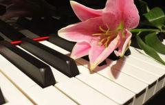 钢琴练习效率低该怎么解决?